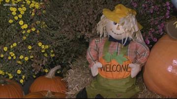 Gatlinburg creates record-breaking scarecrow display