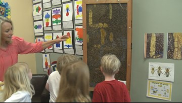 Young students at  Episcopal School of Knoxville buzzing about honeybees