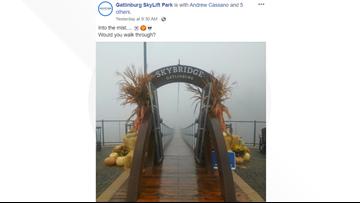 Would you cross the spooky, mist-shrouded Gatlinburg SkyBridge?