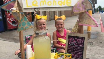 Sweetwater girls sell lemonade to buy hundreds of crayons for Monroe County students