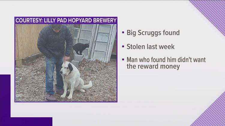 Stolen brewery dog, Big Scruggs, has been found