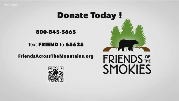 Friends Across the Mountain: Smokies work to keep bears and humans safe
