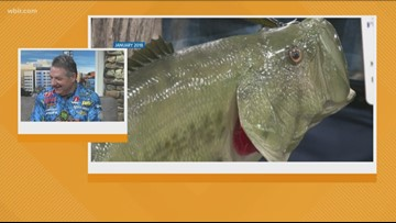 Knoxville Expo Center hosts East Tennessee Fishing Expo