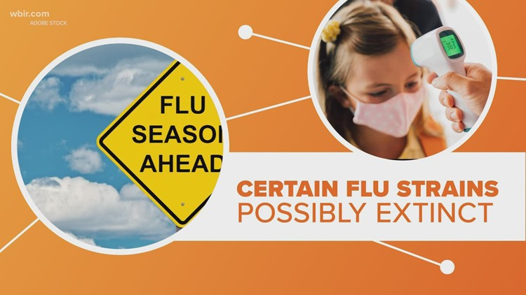 Connect the Dots: According to reports there has been so little flu cases that a couple strains may have gone extinct