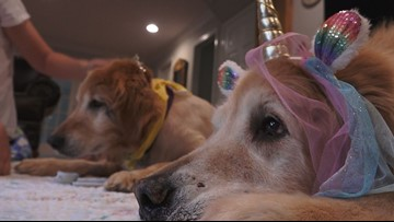 """It's the best years of their life"" 
