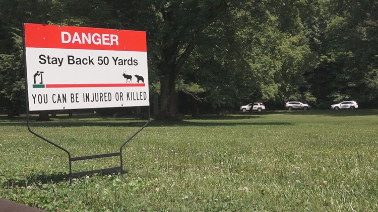 Danger signs posted on GSMNP headquarters lawn warning visitors to remain 50 yards from Elk
