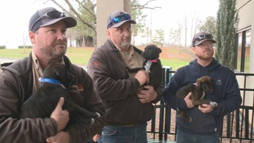 Georgia Power linemen rescue puppies after man finds them in dumpster