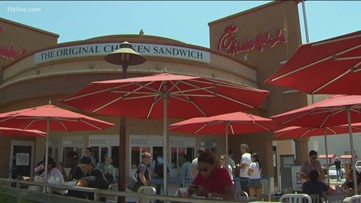 Cow stops traffic while crossing street to Chick-fil-A